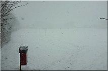 SX9065 : Whiteout, Cricketfield Road, Torre by Derek Harper