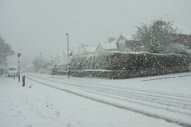 Blizzard, Cricketfield Road, Torre