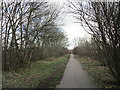 SE3706 : The Trans-Pennine Trail at Lundwood by Jonathan Thacker