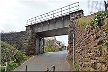 SX8959 : Railway Bridge, Goodrington by N Chadwick