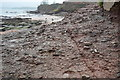 SX8959 : Permian Breccia on the beach at Goodrington Sands by N Chadwick