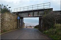 SX8959 : Railway Bridge, Cliff Park Road, Goodrington by N Chadwick