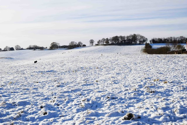 Snow-covered field adjacent to Whitford Road, Bromsgrove, Worcs