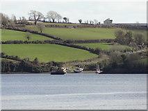 S7012 : Nook Bay, Co. Wexford by Redmond O'Brien
