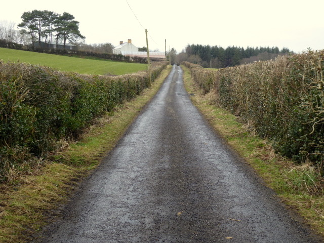 Connaghty Road, Mountjoy Forest West Division