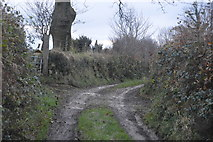 SX4975 : West Devon Way by N Chadwick