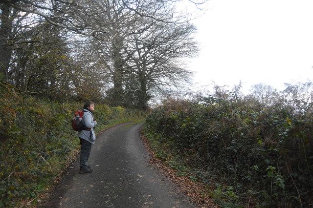 Walker on West Devon Way