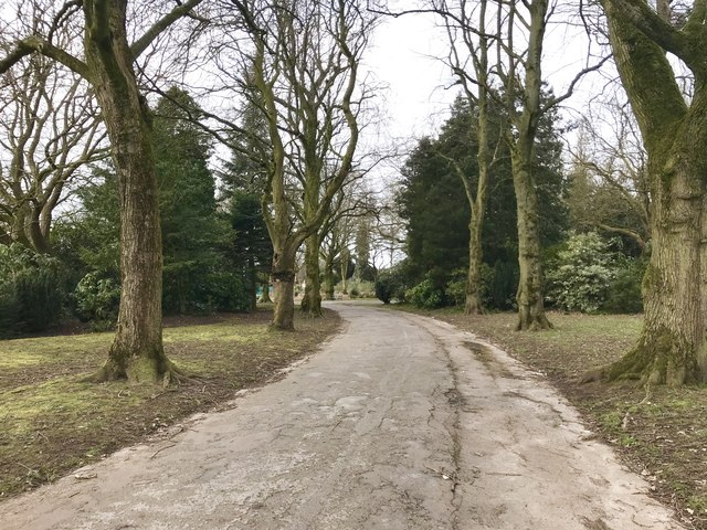 Tree-lined carriage drive in Queen's Park, Longton