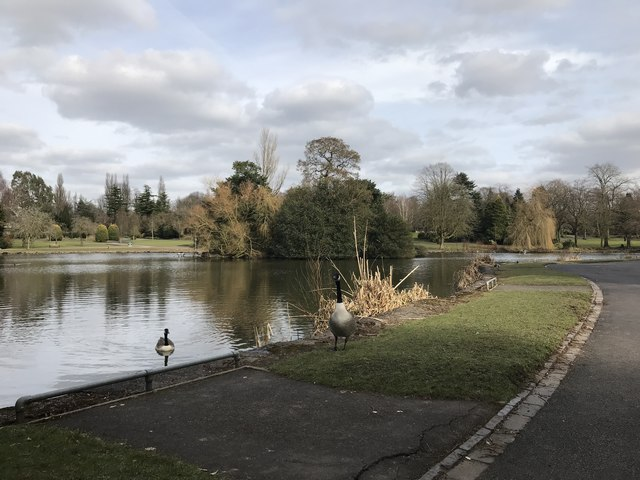 Lake in Queen's Park, Longton