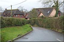 SX9887 : Lower Lane by N Chadwick