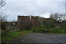 SX9888 : Ruin by Ebford Lane by N Chadwick