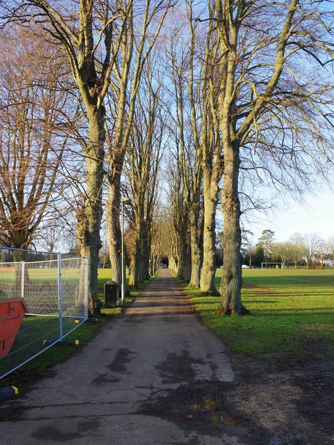 Tree-lined public footpath, The Leys, Witney, Oxon