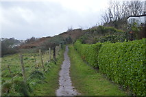 SX8958 : South West Coast Path by N Chadwick