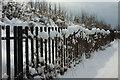 SX9064 : Sanford Road, Torquay, in the snow by Derek Harper