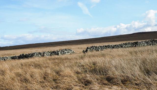 Dry stone wall crossing moorland
