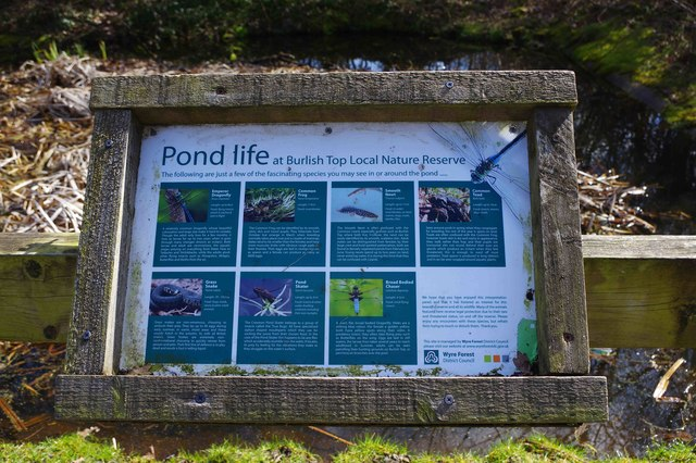 Pond life information board, Burlish Top Nature Reserve, Stourport-on-Severn