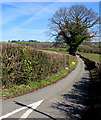 ST4496 : Minor road towards Newchurch and Devauden, Monmouthshire by Jaggery
