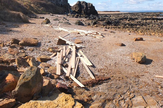Washed-up timber, Gullane Point