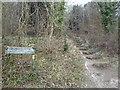 TQ5161 : Path into Meenfield Wood, Shoreham by Malc McDonald
