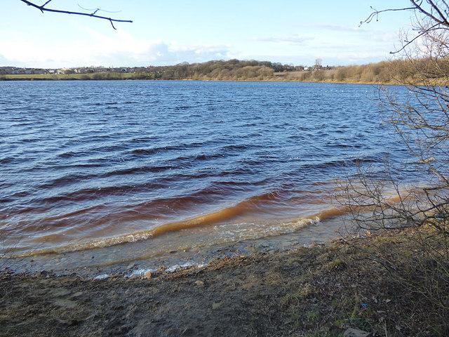 Ardsley Reservoir: waves