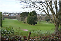 SX9266 : Torquay Golf Course by N Chadwick
