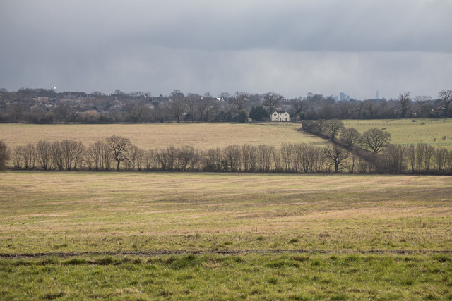 View Towards Enfield Road from Williams Wood, Trent Park