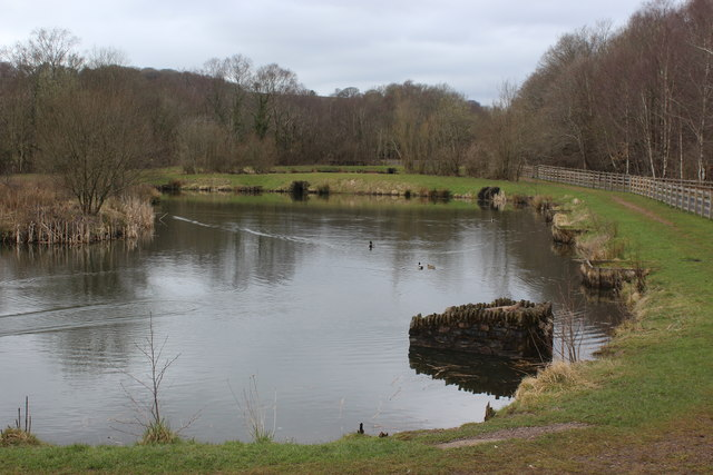 Angling pond next to cycle route, Penallta Country Park