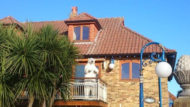 Bear on a balcony