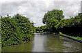 SP3685 : Coventry Canal north of Hawkesbury in Warwickshire by Roger  Kidd
