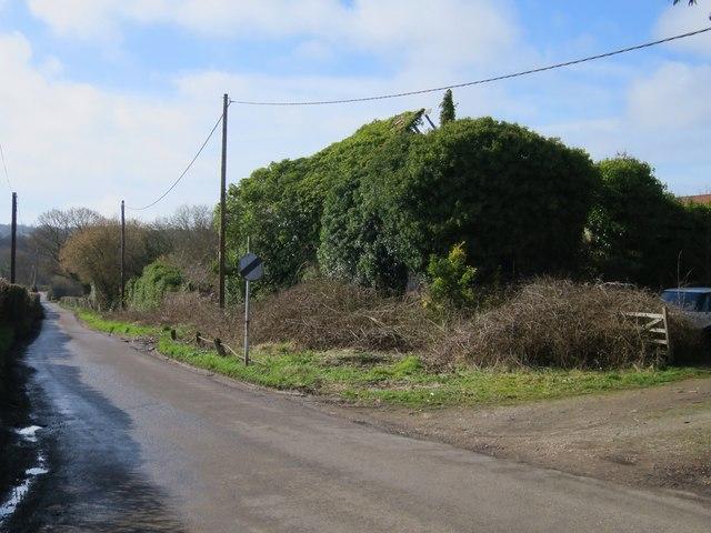 Derelict Oast House at Moor Farm, Stonestile Road, Westfield
