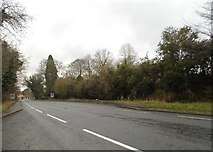 TL8280 : London Road, Elveden by David Howard