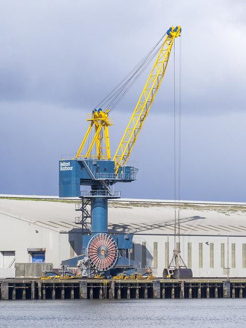 Crane, Belfast