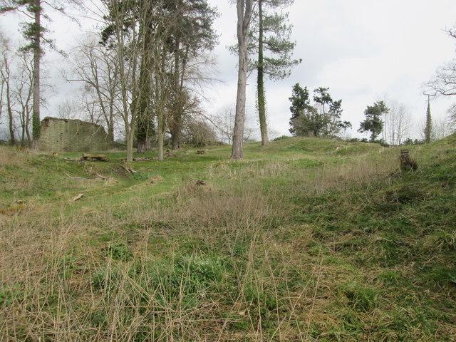 Richards Castle Landscape