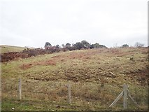 J1727 : Rough grazing on the  southern slopes of the glacial overflow channel below Leod Lower Quarry by Eric Jones