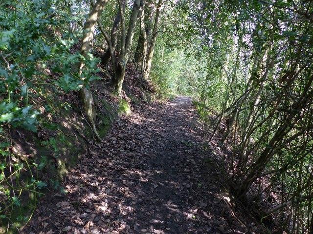 Footpath Barlow FP61 nr Common Side