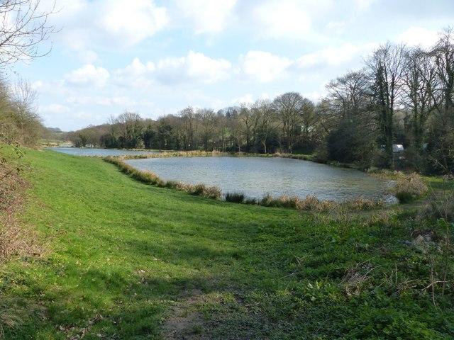 Fishing lakes at Barlow Fishery