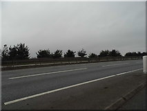 TL9688 : Lay-by on the A11, Larling Heath by David Howard