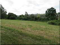 SU9849 : Openland by Guildford cathedral by Given Up