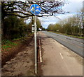 SO7805 : Cycle route 45 sign alongside the A419 near Stonehouse by Jaggery