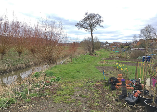Allotments on north bank of Hell's Ditch