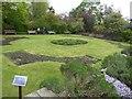 SJ8490 : Knot Garden at Parsonage Gardens by Eirian Evans