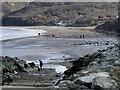 NZ8115 : Walking the dog on Runswick Sands by Graham Hogg