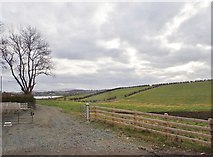 J1326 : Farm road leading from the B8 by Eric Jones