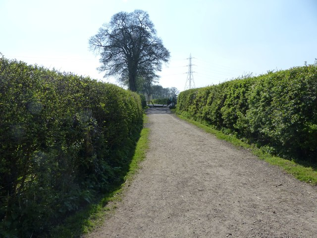 Path to Vale Road