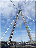 SD3317 : Marine Way bridge cables by Stephen Craven