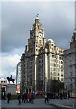 SJ3390 : The Royal Liver Building - Liverpool by Anthony Parkes