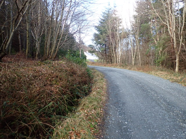 The NI Forest Service Road above the YMCA complex in Donard Wood