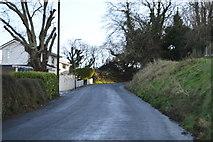 SX9463 : Ilsham Marine Drive by N Chadwick