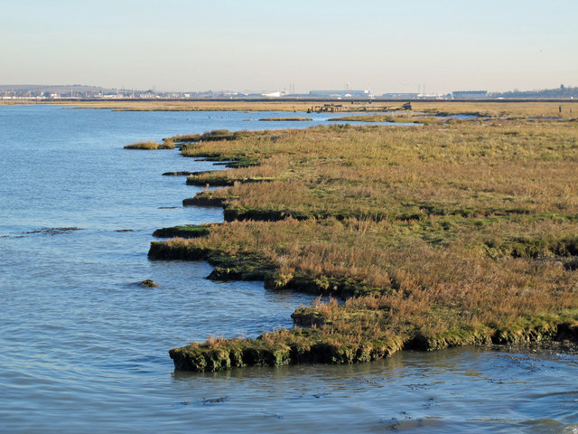 The northern edge of Chetney Marshes