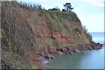SX9268 : Red cliffs, Maidencombe Beach by N Chadwick